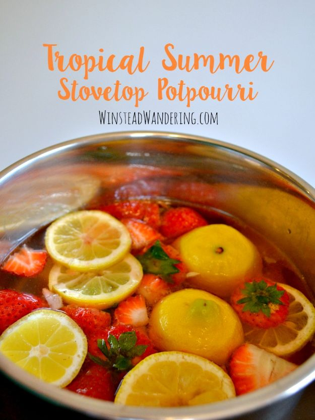 DIY Home Fragrance Ideas - Tropical Summer Stovetop Potpourri - Easy Ways To Make your House and Home Smell Good - Essential Oils, Diffusers, DIY Lampe Berger Oil, Candles, Room Scents and Homemade Recipes for Odor Removal - Relaxing Lavender, Fresh Clean Smells, Lemon, Herb http://diyjoy.com/diy-home-fragrance-ideas