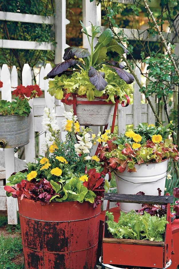 Container Gardening Ideas - Vintage Bucket Gardening - Easy Garden Projects for Containers and Growing Plants in Small Spaces - DIY Potting Tips and Planter Boxes for Vegetables, Herbs and Flowers - Simple Ideas for Beginners -Shade, Full Sun, Pation and Yard Landscape Idea tutorials http://diyjoy.com/container-gardening-ideas