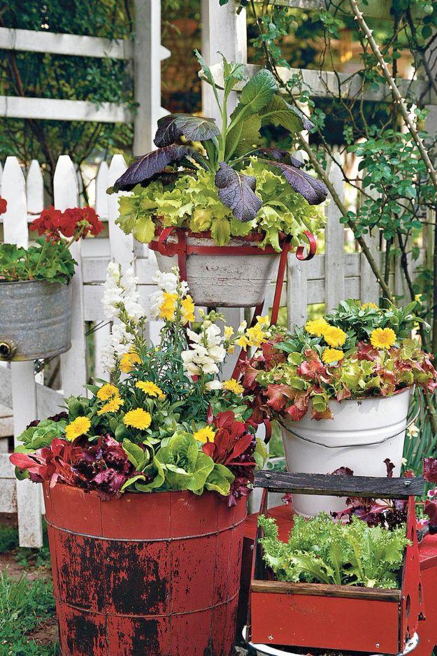 34 DIY Container Gardening Ideas