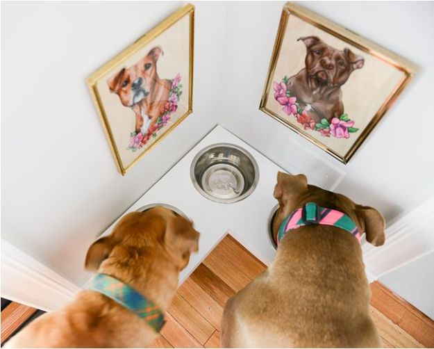 DIY Pet Bowls And Feeding Stations - DIY Corner Pet Food Station - Easy Ideas for Serving Dog and Cat Food, Ways to Raise and Store Bowls - Organize Your Dog Food and Water Bowl With These Cute and Creative Ideas for Dogs and Cats- Monogram, Painted, Personalized and Rustic Crafts and Projects http://diyjoy.com/diy-pet-bowls-feeding-station