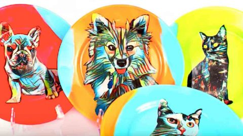 Watch How He Makes These Fabulously Fun Pet Portrait Plates! | DIY Joy Projects and Crafts Ideas