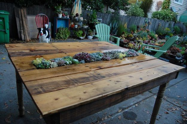 DIY Patio Furniture Ideas - DIY Succulent Pallet Table - Cheap Do It Yourself Porch and Easy Backyard Furniture, Rocking Chairs, Swings, Benches, Stools and Seating Tutorials - Dining Tables from Pallets, Cinder Blocks and Upcyle Ideas - Sectional Couch Plans With Cushions - Makeover Tips for Existing Furniture #diyideas #outdoors #diy #backyardideas #diyfurniture #patio #diyjoy http://diyjoy.com/diy-patio-furniture-ideas
