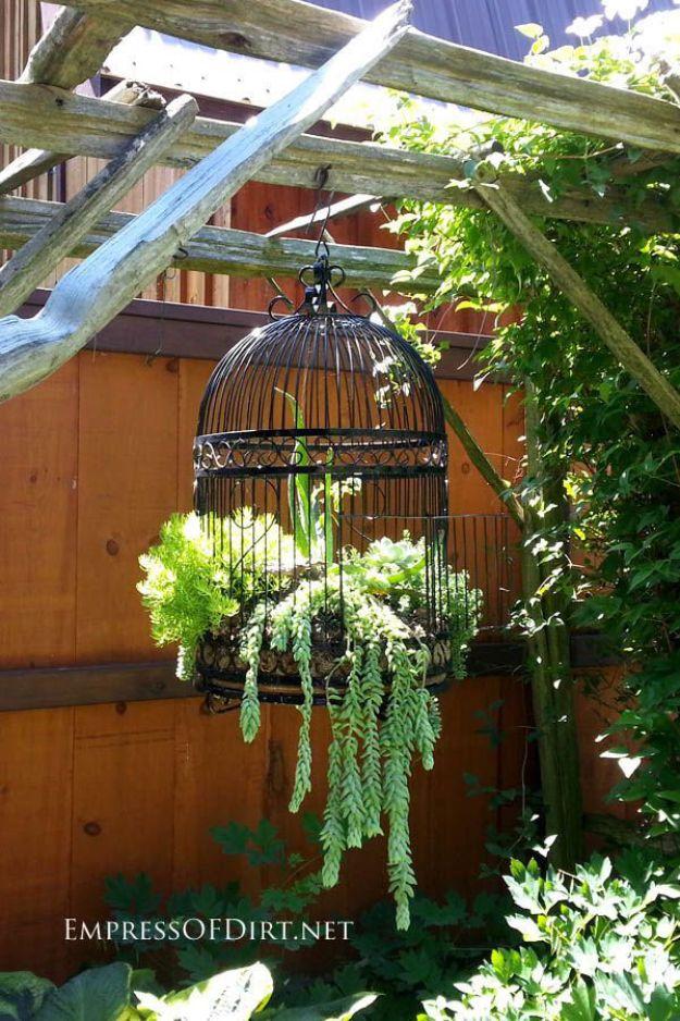 DIY Succulent Ideas - Bird cage hanging Succulent Garden Planter - Creative Garden Art Ideas - Country Style Decorating Ideas