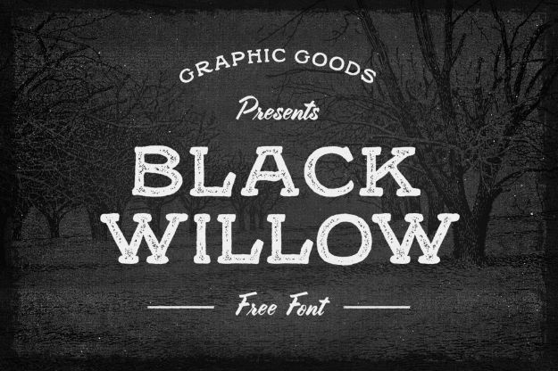Best Free Fonts To Download for Crafts and DIY Projects - Black Willow - Cute, Cool and Professional Looking Font Ideas for Teachers, Crafters and Wedding Decor - Calligraphy, Script, Sans Serif, Handwriting and Vintage Chalkboard Fonts for A Rustic Look - Fun Cricut and Silhouette Downloads - Printables for Signs and Invitations http://diyjoy.com/best-free-fonts