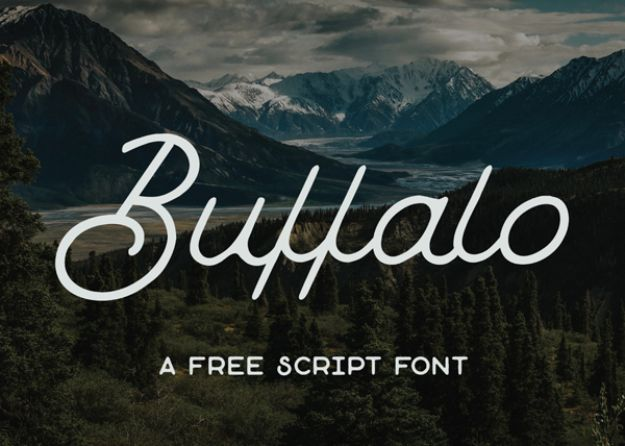 Best Free Fonts To Download for Crafts and DIY Projects - Buffalo - Cute, Cool and Professional Looking Font Ideas for Teachers, Crafters and Wedding Decor - Calligraphy, Script, Sans Serif, Handwriting and Vintage Chalkboard Fonts for A Rustic Look - Fun Cricut and Silhouette Downloads - Printables for Signs and Invitations http://diyjoy.com/best-free-fonts
