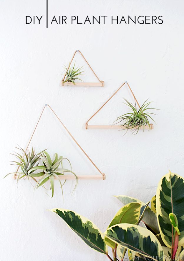 DIY Plant Hangers - DIY Air Plant Hangers - Cute and Easy Home Decor Ideas for Plants - How To Make Planters, Hanging Pot Holders, Wire, Rope and Baskets - Quick DIY Gifts Ideas, Macrame Plant Hanger #gardening #plants #diyideas