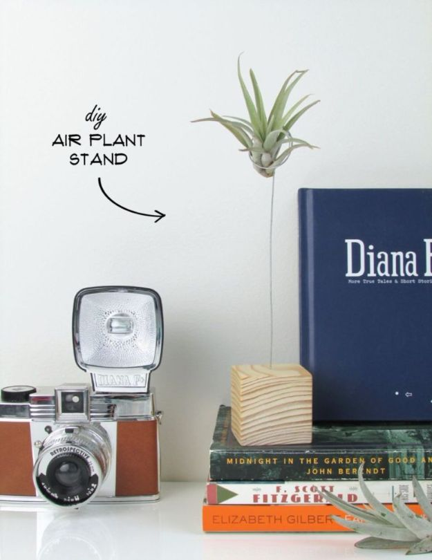 DIY Plant Hangers - DIY Air Plant Stand - Cute and Easy Home Decor Ideas for Plants - How To Make Planters, Hanging Pot Holders, Wire, Rope and Baskets - Quick DIY Gifts Ideas, Macrame Plant Hanger #gardening #plants #diyideas