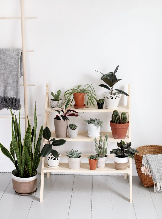 DIY Plant Hangers - DIY Ladder Plant Stand - Cute and Easy Home Decor Ideas for Plants - How To Make Planters, Hanging Pot Holders, Wire, Rope and Baskets - Quick DIY Gifts Ideas, Macrame Plant Hanger http://diyjoy.com/diy-plant-hangers-stands