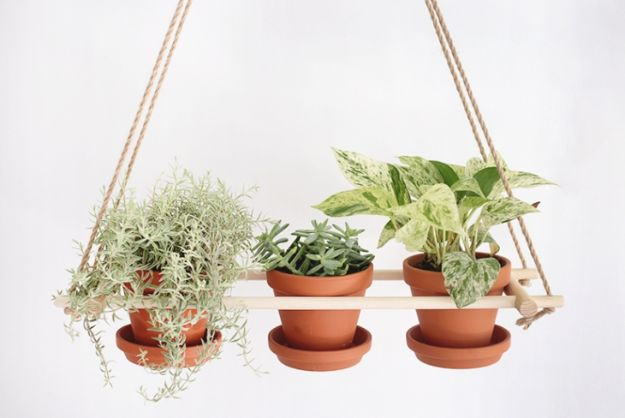 DIY Plant Hangers - DIY Wood Dowels Hanging Planter - Cute and Easy Home Decor Ideas for Plants - How To Make Planters, Hanging Pot Holders, Wire, Rope and Baskets - Quick DIY Gifts Ideas, Macrame Plant Hanger #gardening #plants #diyideas