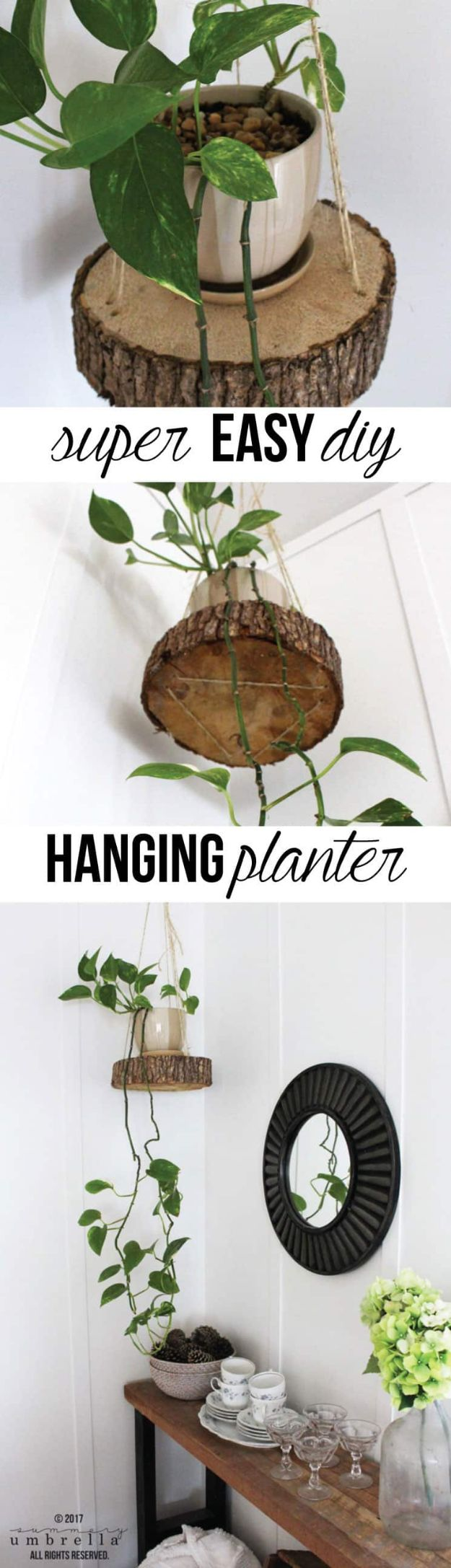 DIY Plant Hangers - Easy DIY Hanging Planter Using A Wood Slice And Rope - Cute and Easy Home Decor Ideas for Plants - How To Make Planters, Hanging Pot Holders, Wire, Rope and Baskets - Quick DIY Gifts Ideas, Macrame Plant Hanger #gardening #plants #diyideas