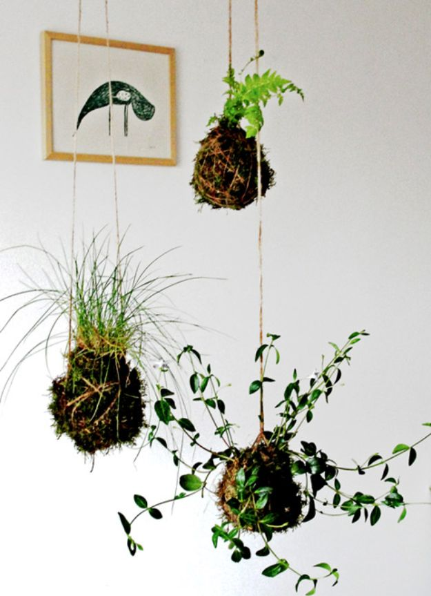 DIY Plant Hangers - Kokedama String Garden - Cute and Easy Home Decor Ideas for Plants - How To Make Planters, Hanging Pot Holders, Wire, Rope and Baskets - Quick DIY Gifts Ideas, Macrame Plant Hanger #gardening #plants #diyideas