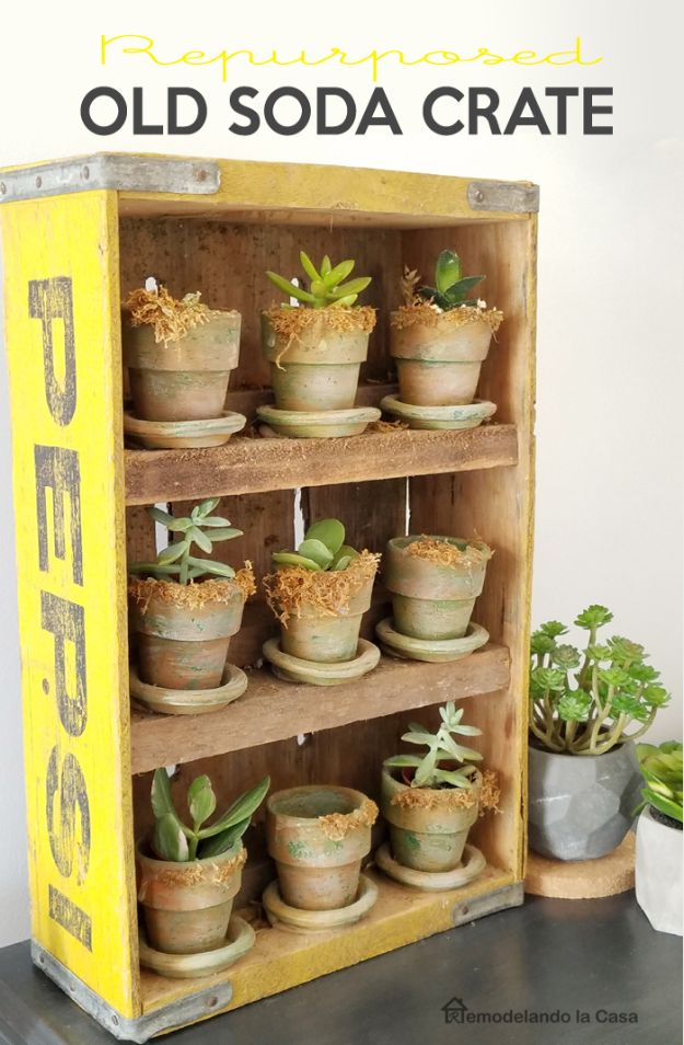 DIY Gardening Ideas for Plant Stands - Old Soda Crate Succulent Garden - Creative Home Decor Ideas from Wooden Crate