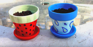 Springtime Is For Potting Plants — Make Them More Special By Painting Your Flower Pots!