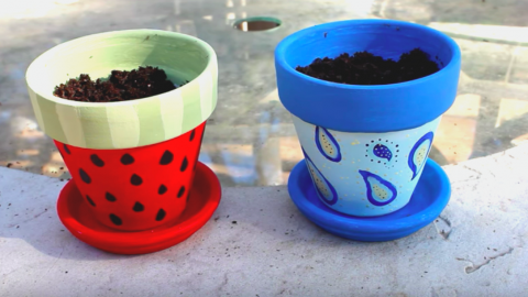Springtime Is For Potting Plants — Make Them More Special By Painting Your Flower Pots! | DIY Joy Projects and Crafts Ideas