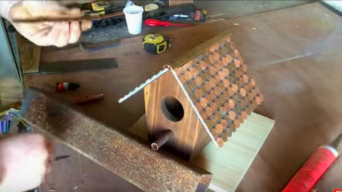 We've All Heard Of Putting Your 2 Cents In, But This Guy Puts His On A Birdhouse. Watch! | DIY Joy Projects and Crafts Ideas
