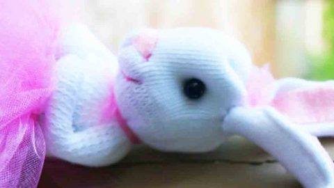 Get Started On Making These Ridiculously Adorable Bunnies So Grab Your Socks! | DIY Joy Projects and Crafts Ideas