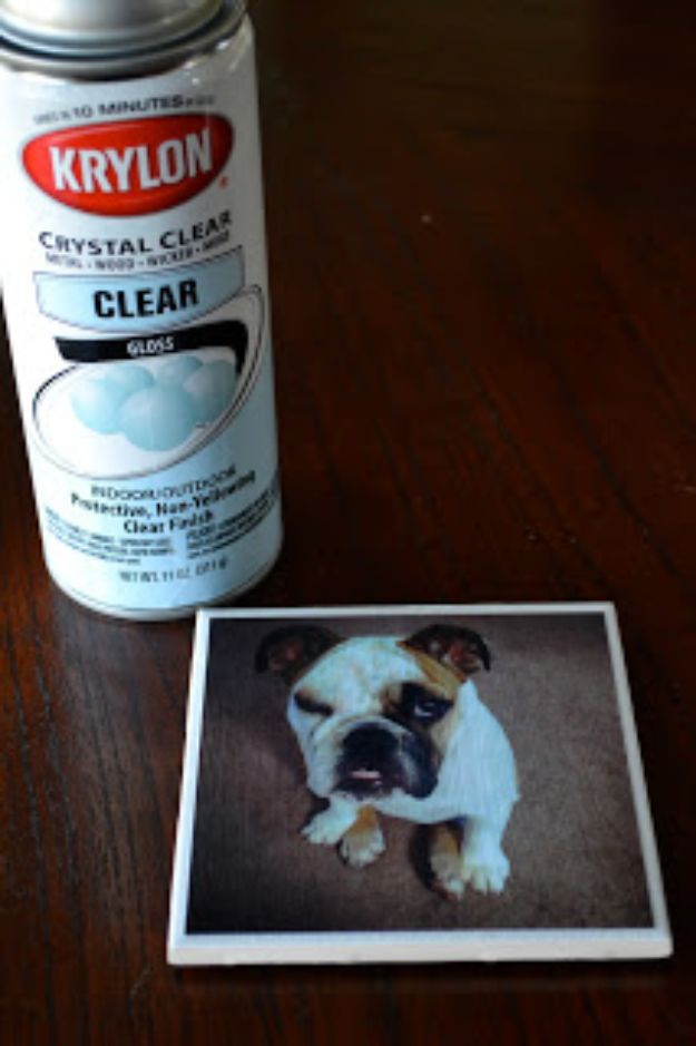 DIY Ideas With Dogs - Dog Photo Coaster - Cute and Easy DIY Projects for Dog Lovers - Wall and Home Decor Projects, Things To Make and Sell on Etsy - Quick Gifts to Make for Friends Who Have Puppies and Doggies - Homemade No Sew Projects- Fun Jewelry, Cool Clothes and Accessories #dogs #crafts #diyideas