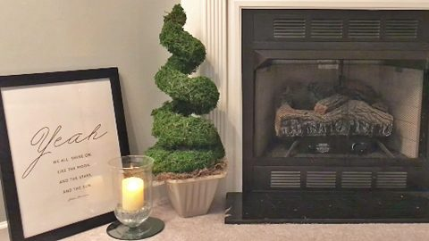You Don't Need A Green Thumb To Make This Dollar Store Topiary | DIY Joy Projects and Crafts Ideas