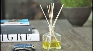 Your House Will Smell Amazing With This Easy 3-Ingredient Diffuser
