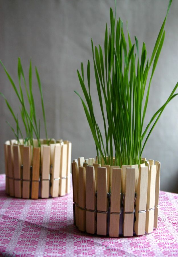 DIY Home Decor Projects for Beginners - Clothespin Planter - Easy Homemade Decoration for Your House or Apartment - Creative Wall Art, Rugs, Furniture and Accessories for Kitchen - Quick and Cheap Ways to Decorate on A Budget - Farmhouse, Rustic, Modern, Boho and Minimalist Style With Step by Step Tutorials #diy
