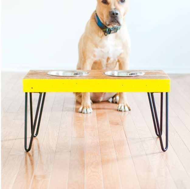 DIY Pet Bowls And Feeding Stations - Elevated Pet Food Station - Easy Ideas for Serving Dog and Cat Food, Ways to Raise and Store Bowls - Organize Your Dog Food and Water Bowl With These Cute and Creative Ideas for Dogs and Cats- Monogram, Painted, Personalized and Rustic Crafts and Projects http://diyjoy.com/diy-pet-bowls-feeding-station