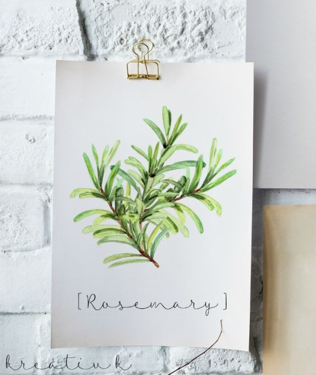 Free Printables For Your Walls - Free Rosemary Printable - Easy Canvas Ideas With Free Downloadable Artwork and Quote Sayings - Best Free Prints for Wall Art and Picture to Print for Home and Bedroom Decor - Signs for the Home, Organization, Office - Quotes for Bedroom and Kitchens, Vintage Bathroom Pictures - Downloadable Printable for Kids - DIY and Crafts by DIY JOY #wallart #freeprintables #diyideas #diyart #walldecor #diyhomedecor http://diyjoy.com/best-free-printables-wall-art