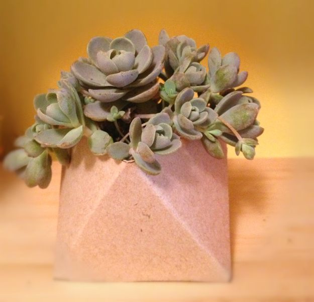 Cool DIY Ideas With Cereal Boxes - Geometric Succulent Planter - Easy Organizing Ideas, Cute Kids Crafts and Creative Ways to Make Things Out of A Cereal Box - Cheap Gifts, DIY School Supplies and Storage Ideas http://diyjoy.com/diy-ideas-cereal-boxes