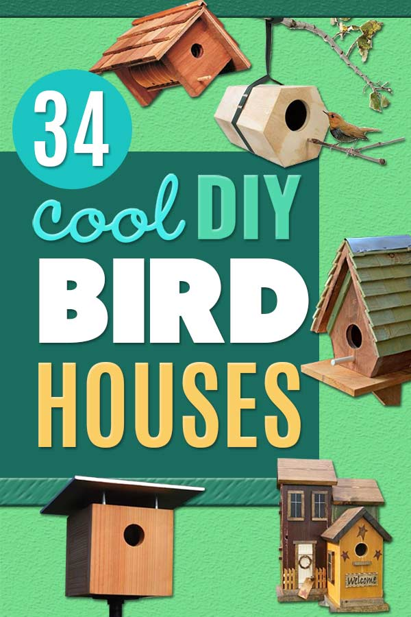 DIY Bird Houses - Easy One-Board Bird House - Easy Bird House Ideas for Kids and Adult To Make - Free Plans and Tutorials for Wooden, Simple, Upcycle Designs, Recycle Plastic and Creative Ways To Make Rustic Outdoor Decor and a Home for the Birds - Fun Projects for Your Backyard This Summer #diy