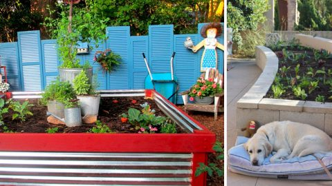 Turns Out, The Perfect Backyard Garden Starts With One of These 36 Ideas | DIY Joy Projects and Crafts Ideas