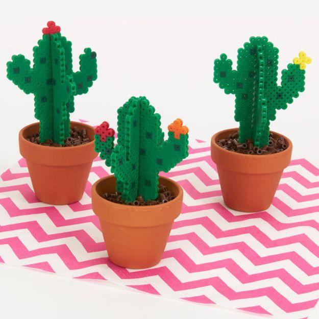 Blooming Perler Cacti