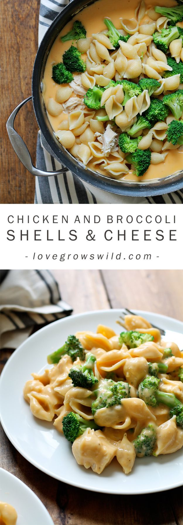 Easy Dinner Recipes for Kids and Family - Chicken and Broccoli Shells and Cheese - Quick and Simple Dinner Recipe Ideas for Weeknight and Last Minute Supper - Chicken, Ground Beef, Fish, Pasta, Healthy Salads, Low Fat and Vegetarian Dishes #easyrecipes #dinnerideas #recipes