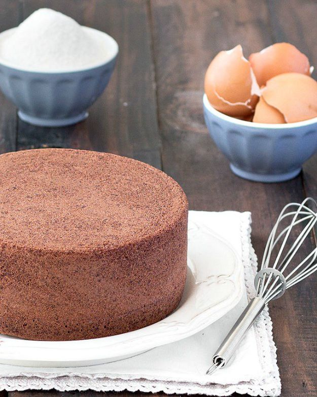 Best Italian Recipes - Chocolate Italian Sponge Cake - Authentic and Traditional italian dishes For Dinner, Appetizers, and Easy Lunch - Pasta with Chicken, Lasagna, Noodles With Cheese, Healthy Recipe Ideas - Party Trays and Food For A Crowd - Fettucini, Spaghetti, Alfredo Sauce, Meatballs, Grilled Steak and Fish, Soup, Seafood, Vegetarian and Crockpot Versions #italian #italianfood #recipes #italianrecipes http://diyjoy.com/best-italian-recipes