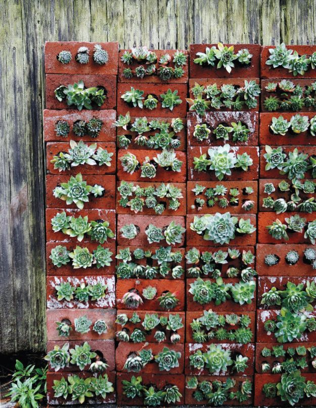 DIY Ideas With Bricks - DIY Recycled Brick Succulent Wall - Home Decor and Creative Do It Yourself Projects to Make With Bricks - Ideas for Patio, Walkway, Fireplace, Firepit, Mantle, Grill and Art - Inexpensive Decoration Tutorials With Step By Step Instruction for Brick DIY #diy #homeimprovement