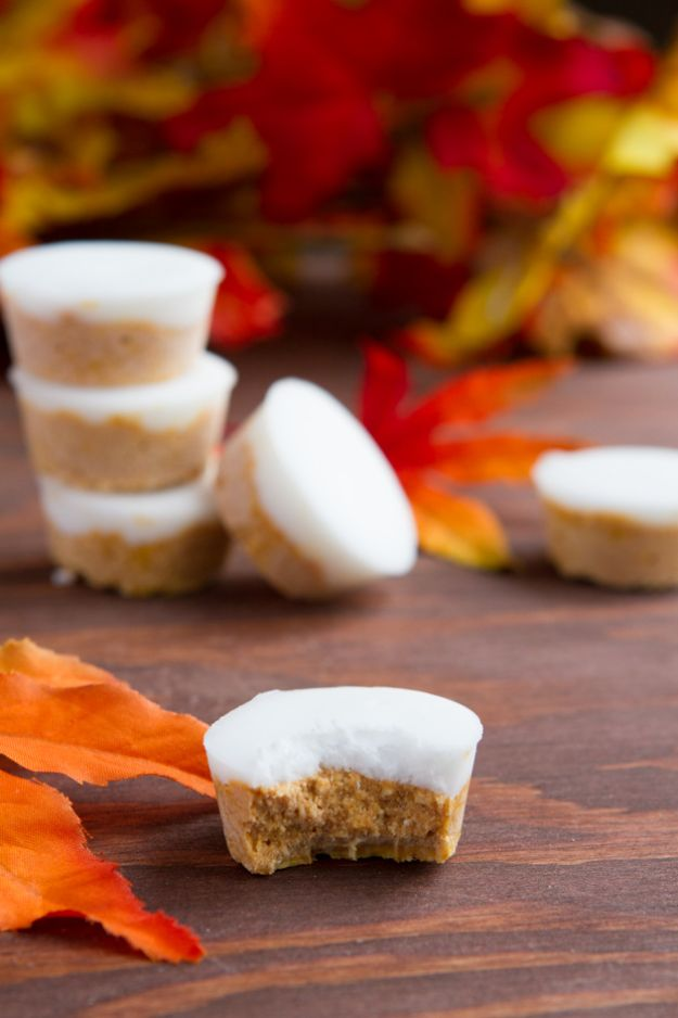 Keto Fat Bombs and Best Ketogenic Recipe Ideas to Make At Home - Fat Bomb Pumpkin Pie Patties - Easy Recipes With Peanut Butter, Cream Cheese, Chocolate, Coconut Oil, Coffee - No Bake Low Carb Fat Bomb and Snacks for Keto Diets - Simple Dairy Free and Vegan Variations http://diyjoy.com/keto-fat-bombs