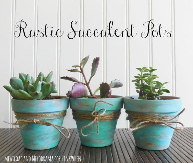 DIY Home Decor Projects for Beginners - Rustic Succulent Pots - Easy Homemade Decoration for Your House or Apartment - Creative Wall Art, Rugs, Furniture and Accessories for Kitchen - Quick and Cheap Ways to Decorate on A Budget - Farmhouse, Rustic, Modern, Boho and Minimalist Style With Step by Step Tutorials http://diyjoy.com/diy-home-decor-beginners