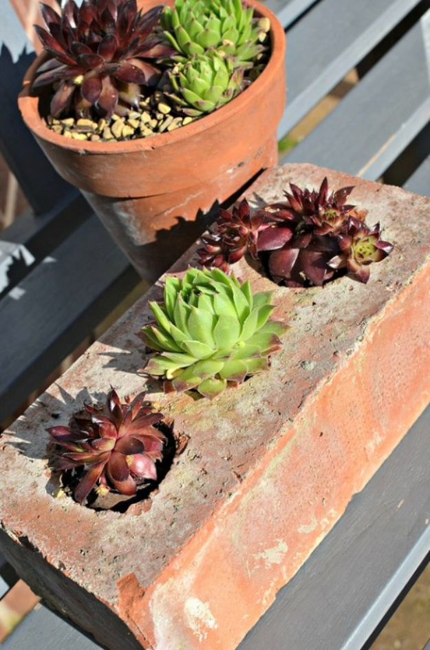 DIY Ideas With Bricks - Succulent Pot - Home Decor and Creative Do It Yourself Projects to Make With Bricks - Ideas for Patio, Walkway, Fireplace, Firepit, Mantle, Grill and Art - Inexpensive Decoration Tutorials With Step By Step Instruction for Brick DIY #diy #homeimprovement