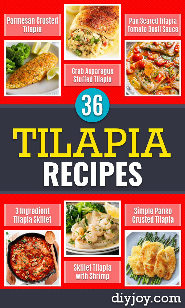 Tilapia Recipes - Best Recipe Ideas for Tilapia Fish - Dinner, Lunch, Snacks and Appetizers - Healthy Foods, Gluten Free Low Carb and Keto Friendly Dishes - Salads, Pastas and Easy Weeknight Dinners, Lunches for Work - Broiled, Grilled, Lemon Baked, Fried and Quick Ways to Make Tilapia http://diyjoy.com/tilapia-recipes