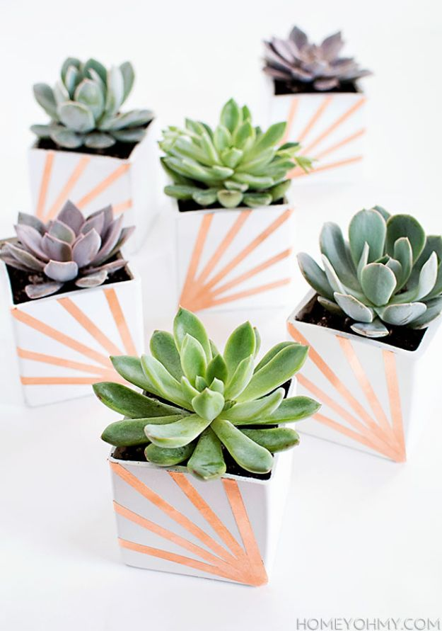 DIY anniversary Gifts - DIY Copper and White Succulent Planters - Homemade, Handmade Gift Ideas for Wedding Anniversaries - Cool, Easy and inexpensive Gifts To Make for Husband or Wife #anniverary #diy #gifts