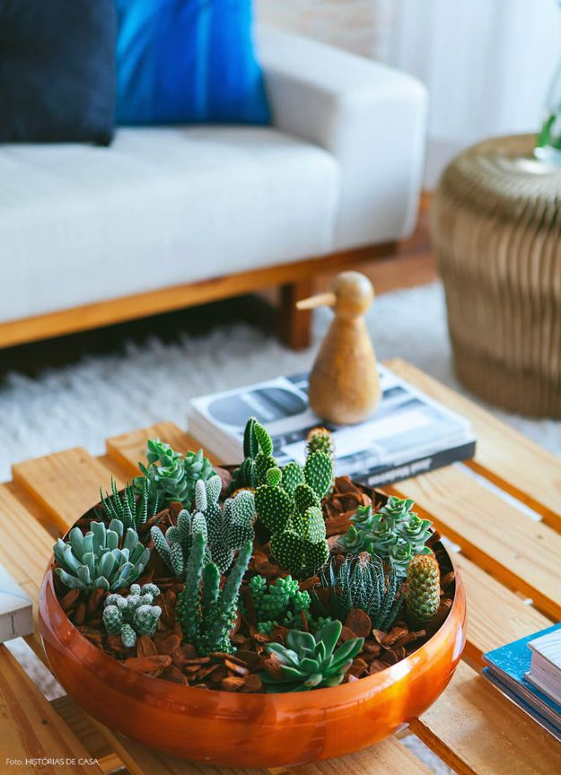 Cheap DIY Living Room Decor Ideas - Succulent Arrangement - Cool Modern, Rustic Creative Farmhouse Home Decor On A Budget - Do It Yourself Coffee Tables, Wall Art, Rugs, Pillows and Chairs. Step by Step Tutorials and Instructions http://diyjoy.com/cheap-diy-living-room-decor