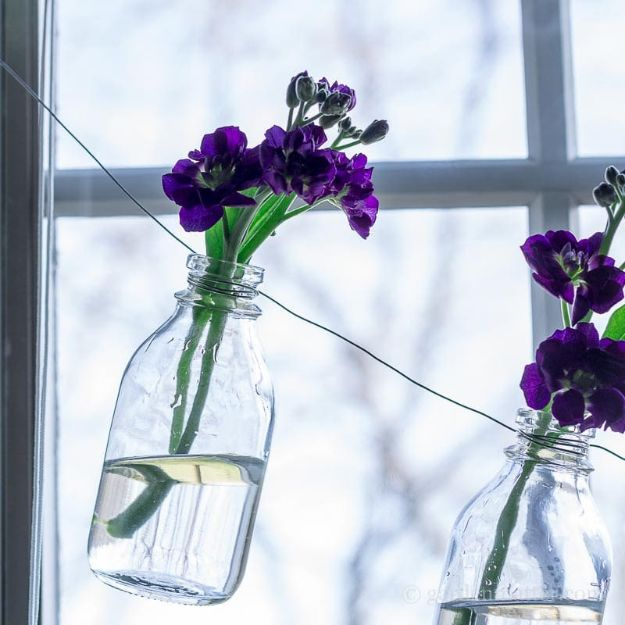 Fun DIY Ideas for Adults - DIY Easy Bottle Garland for Beautiful Flowers Everyday - Easy Crafts and Gift Ideas , Cool Projects That Are Fun to Make - Crafts Idea for Men and Women