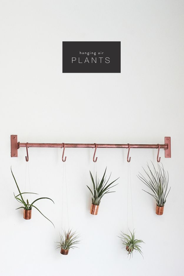 DIY Bedroom Decor Ideas - Hanging Air Plants - Easy Room Decor Projects for The Home - Cheap Farmhouse Crafts, Wall Art Idea, Bed and Bedding, Furniture