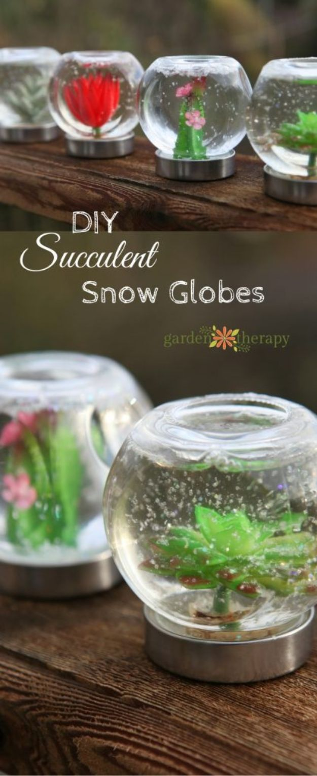 DIY Snow Globe Ideas - Succulent Snow Globe - Easy Ideas To Make Snow Globes With Kids - Mason Jar, Picture, Ornament, Waterless Christmas Crafts - Cheap DYI Holiday Gift Ideas