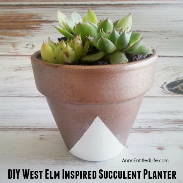DIY Ideas for Clay Pots - DIY West Elm Inspired Succulent Planter - Cute Gardening Projects Tutorials for Decorating Pots - Pretty Rustic and Farmhouse Planters for Cheap Home Decor