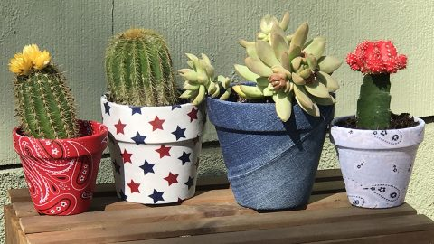 How to Make Decoupage Fabric Covered Pots | DIY Joy Projects and Crafts Ideas