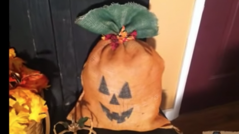 DIY Burlap Sack Pumpkin | DIY Joy Projects and Crafts Ideas
