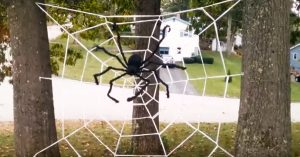 Make This DIY Spider Web With Saran Wrap