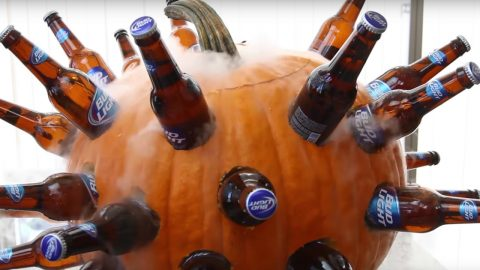 How to Make A DIY Pumpkin Beer Cooler | DIY Joy Projects and Crafts Ideas