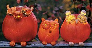 DIY Halloween: How to Make Pumpkin Owls