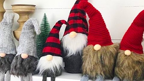Learn To Make DIY Sock Gnome | DIY Joy Projects and Crafts Ideas