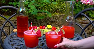 Strawberry Margarita On The Rocks Recipe